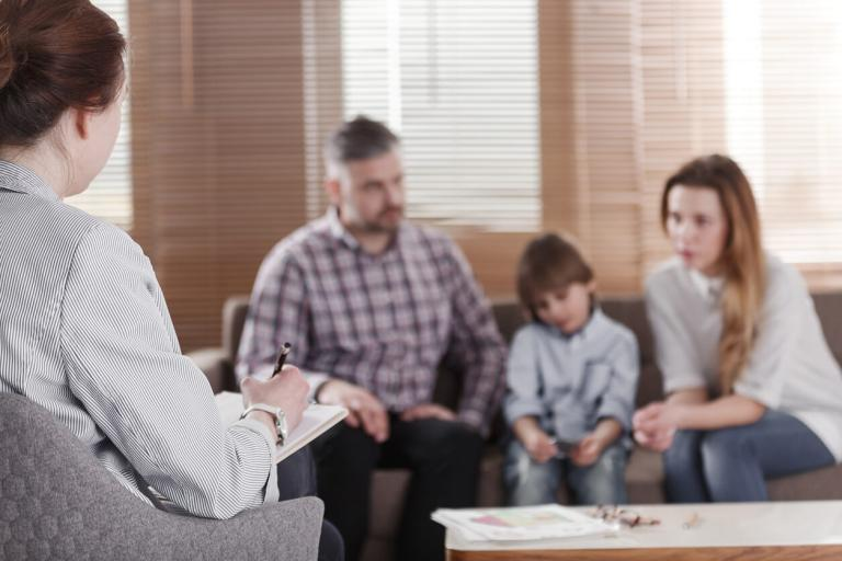 Single Expert Witness assesses Parenting Situation