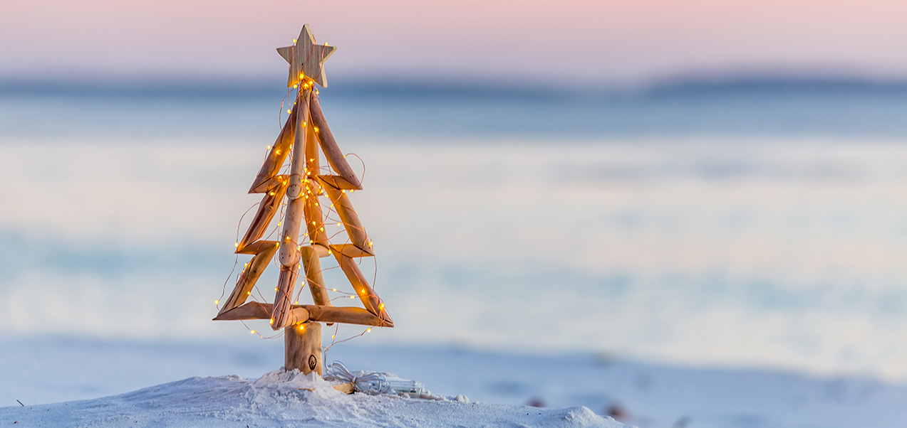Merry Christmas from the team at DS Family Law
