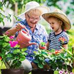 Parenting Orders for Grandparents